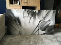 3 piece Floral Canvas