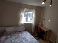 Spacious double room for rent, includes all bills