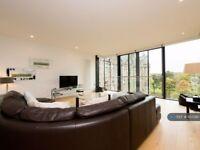 2 bedroom flat in Simpson Loan, Edinburgh, EH3 (2 bed) (#937290)