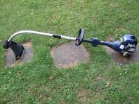 petrol Strimmer , Challenge Xtreme , it has not had much use
