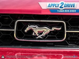 2008 Ford Mustang  Leather, Cold Air, Throttle Spacer, Pypes Edmonton Edmonton Area image 9