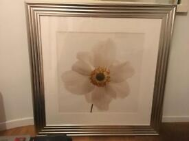 Very large framed print picture