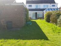 Cheap Garden,Painting and Handyman Services