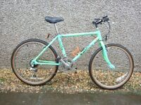 """Boy's Raleigh Lizard Mountain Bike in Great Condition - suit 8 to 15 yrs or 4'10"""" to 5'5"""