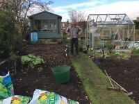 Friendly Fife Gardener: Low Impact Services Offered- Rates Negotiable