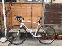 Specialized Allez Elite Road Bike - PERFECT CONDITION