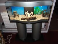 fish tank aquarium bow front with acceseries