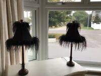 2 x beautiful black lamps