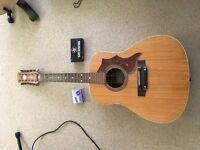 Hoyer 12 string acoustic