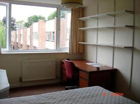 Headington single room and master double available