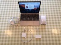 MacBook Retina 12-inch, early 2016. 1.2Ghz Intel Core m5 processor. 8 GB memory
