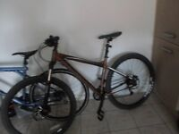 Good condition Hellcat carrera mountain bike