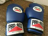 Probox 10oz gloves