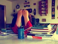 Need help with your essay? Proofreading, planning and editing help at hand