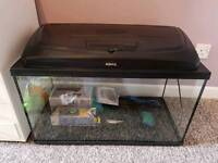 90L Tropical fish tank for sale