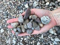 20mm gravel for FREE!