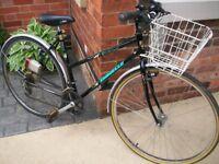 Ladies Emmanuelle Bike 12 Speed Shimano Gears