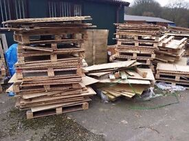 Free Wood Ply Wood Pallets and Sheets of Ply Wood Various Sizes