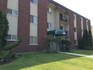 235 Morgan Avenue - One Bedroom Apartment Apartment for Rent Kitchener / Waterloo Kitchener Area image 5