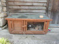 Guinea pig hutch, run and accessories - FREE to good home (free to collector)