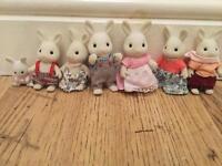 Sylvanian family (rabbit)