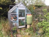 Free to good home green house and contents