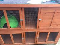 3 month old large rabbit hutch