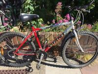 "Giant Rincon 19"" large mountain bike Bromley"
