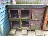 Double hutch Guinea pig rabbit ferret