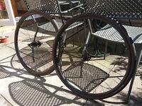 Kinesis Crosslight Disc V3 Road/CX wheelset