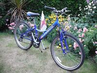 """Boys / Girls Falcon Castaway Mountain Bike - 24"""" Wheels - 18 Gears -12"""" Frame - Stand"""