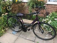 Apollo Elyse Ladies Dutch Bike