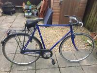 Large Blue 'Everton' Bike