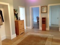 Southside - large room, all bills included-next to subway/bus/shops