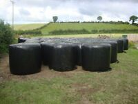 Horses, ponies, Grass, Grazing, Round bales, crop silage, Hay, Haylage