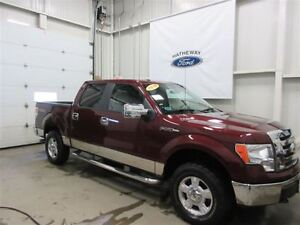 2010 Ford F-150 XLT, REDUCED TO CLEAR, GREAT PRICE