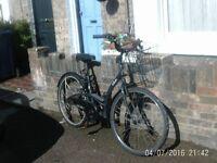 Classy Lady Bike
