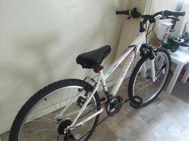 Great condition Apollo mountain bike!