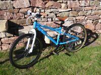 Dawes Phantom. Kid's bike. Blue with skull decals.