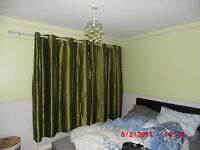 Green lined curtains and pole