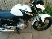 Yamaha ybr 125 fuel injected 65 plate ybr125