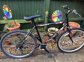 Brand new mountain bike needs slight tlc