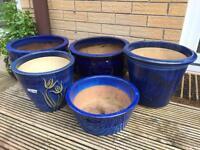 5 Blue Terracotta plant pots