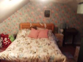 Double room available for single occupant in shared house