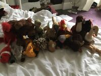 TY BEANIE BABY VARIOUS ANIMALS.