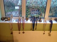15 trophies and 10 medals (£5 for the lot!)