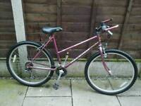 LADIES RALEIGH AMAZON, MOUNTAIN BIKE, 26, ALLOY WHEELS,