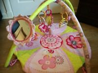 Bright Starts Pretty in Pink Supreme Play Gym and Blossom Farm Tummy Time Roller