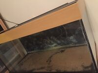 Fish Tank at 180l for £140 or offer