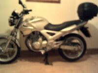 Honda CBF 250. Immaculate condition! 4,293 miles.